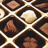 Chocolate Cases